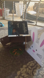 Image showing a bunny cutout with carrots as its trap